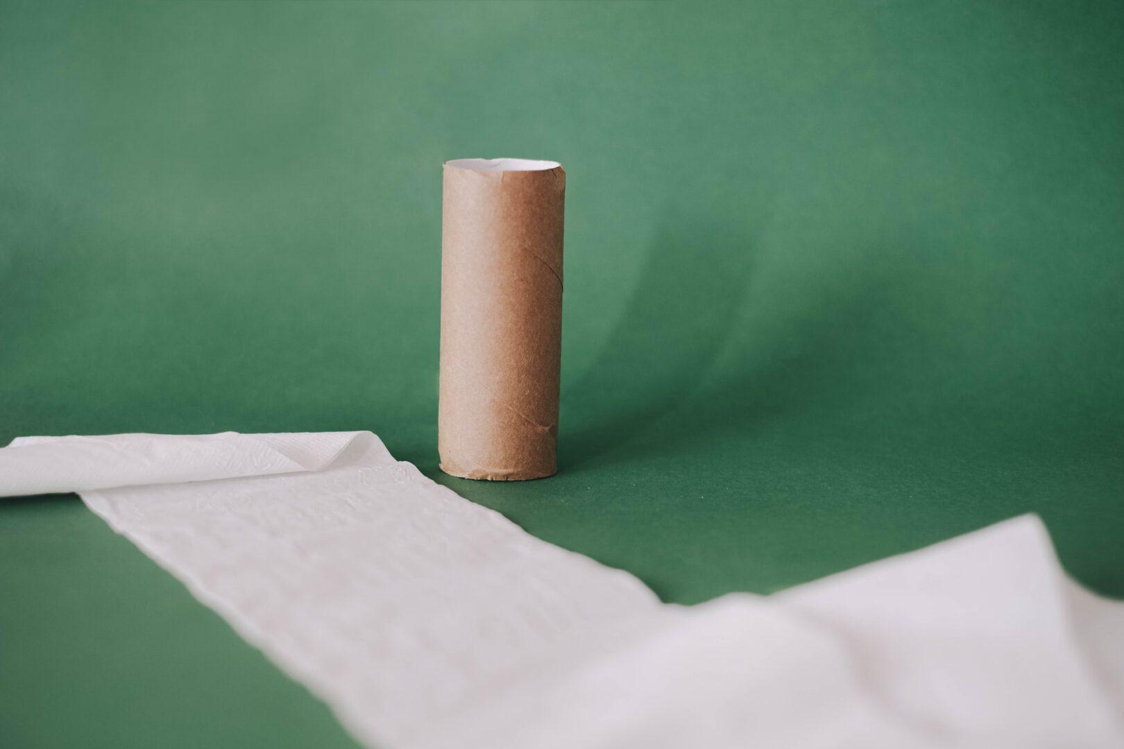 Toilet Paper Roll Challenge